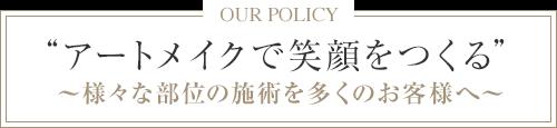施術可能な部位数「日本最多」